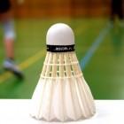 Badminton Online court hire