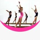 Ace Sports Gymnastics Academy