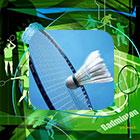 Badminton Smashers Night