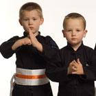 Ace Kung Fu Academy